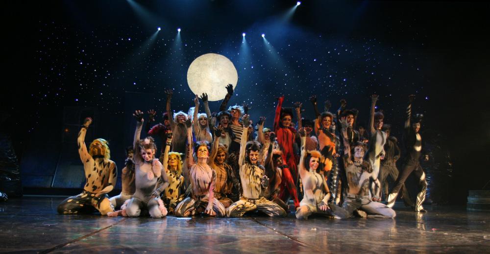 http://upload.wikimedia.org/wikipedia/commons/d/df/Koty_musical.jpg