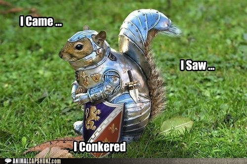 http://quicklol.com/wp-content/uploads/2012/05/i-came-squirrel.jpg